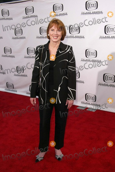 Mariette Hartley Photo - Mariette Hartley at the 2nd Annual TV Land Awards, Hollywood Palladium, Hollywood, CA 03-07-04