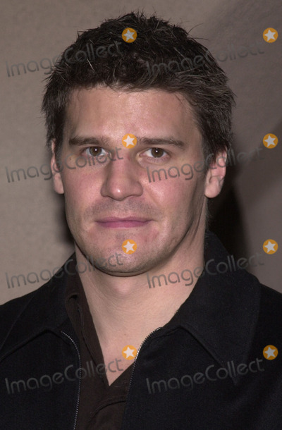 David Boreanaz Photo - David Boreanaz at the WB Network's Winter 2002 All-Star Party, Il Fornaio Restaurant, Pasadena, 01-16-02
