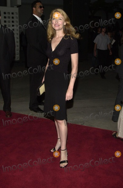 "Patricia Clarkson Photo - Patricia Clarkson at the premiere of the Warner Bros. film ""Welcome To Collinwood"" at the Cinerama Dome, Hollywood, CA 09-30-02"