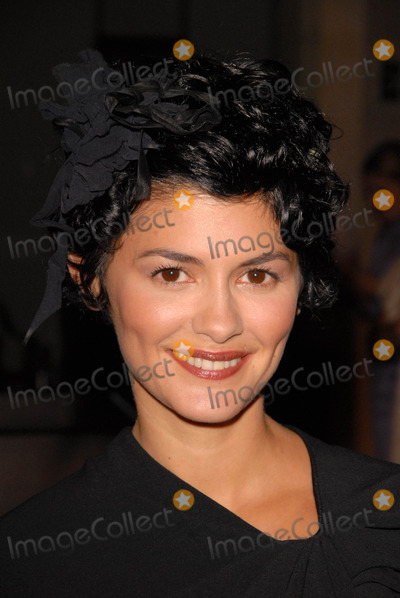Audrey Tautou, Coco Photo - Audrey Tautou