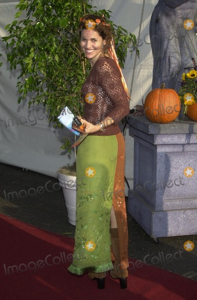 Amy Brenneman Photo - Amy Brenneman at the 9th Annual Dream Halloween Los Angeles, presented by Mattel, and Toys R Us, a magical Halloween wonderland to benefit Children Affected by AIDS Foundation, Barker Hanger, Santa Monica, CA 10-26-02