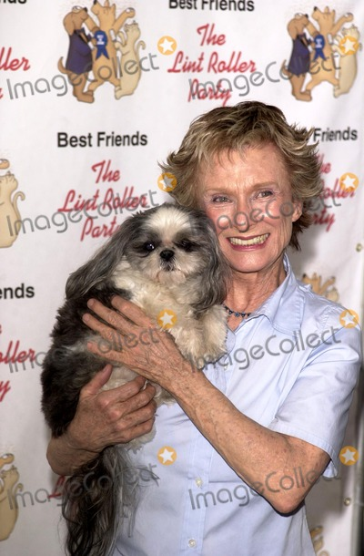 Cloris Leachman Photo - Cloris Leachman at the Best Friends Animal Sanctuary Lint Roller Party, Barker Hanger, Santa Monica, CA 03-30-03