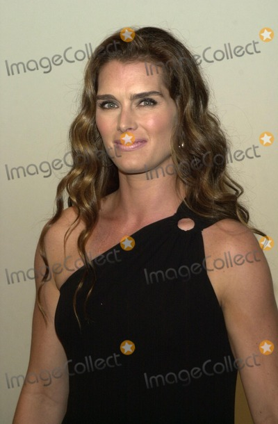 Brooke Shields Photo - Brooke Shields at Women In Film's Crystal and Lucy Awards, Century P:laza Hotel, Century City, CA 09-20-02