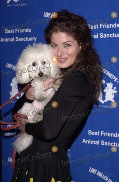 "Debra Messing Photo -  Debra Messing at the 2000 Lint Roller ""Dear To Wear Black"" party to benefit the Best Friends Animal Sanctuary, Hollywood, 11-16-00"