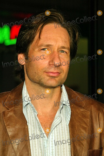 "David Duchovny Photo - David Duchovny At the world premiere of ""Friday Night Lights"", Grauman's Chinese Theatre, Hollywood, CA 10-06-04"