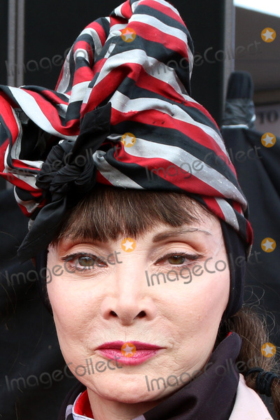 Toni Basil Photo - LOS ANGELES - OCT 16:  Toni Basil at the ALS Association Golden West Chapter Los Angeles County Walk To Defeat ALS at the Exposition Park on October 16, 2016 in Los Angeles, CA