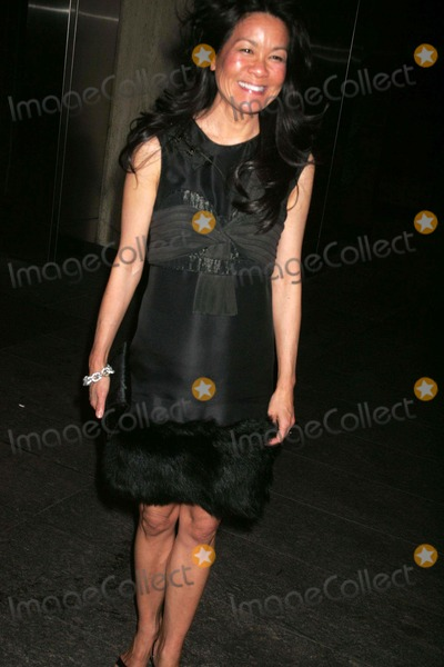 "Helen Lee Schifter, Nobu Photo - Afterparty at Nobu 57 For the Premiere of ""Then She Found ME"" Sponsored by the Cinema Society and Mulberry West 57th Street 04-21-2008 Photos by Rick Mackler Rangefinder-Globe Photos Inc.2008 Helen Lee Schifter"