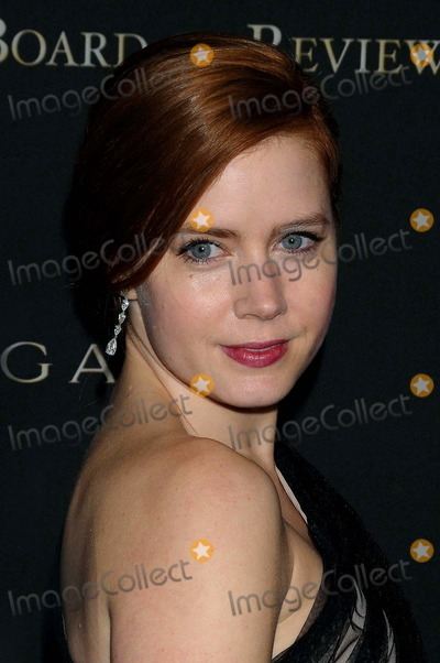 Amy Adams Photo - The 2008 National Board of Review of Motion Pictures Awards Gala at Cipriani in New York City on 01-14-2009 Amy Adams Photo by Ken Babolcsay -ipol-Globe Photos 2009