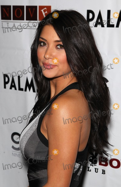 Arianny Celeste Photo - 04 December 2010 - Las Vegas, Nevada - Arianny Celeste.  Arianny Celeste hosts the Official Ultimate Fighter Finale after Party at Moon Nightclub at the Palms Casino Hotel. Photo: MJT/AdMedia