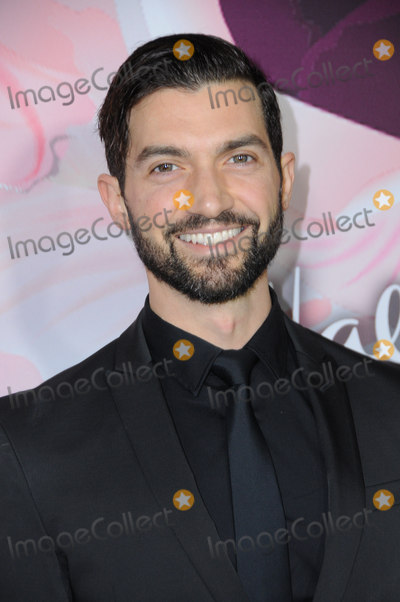 David Alpay, Alpay Photo - 13 January 2018 - Pasadena, California - David Alpay. Hallmark Channel and Hallmark Movies & Mysteries Winter 2018 TCA Event held at Tournament House. Photo Credit: Birdie Thompson/AdMedia