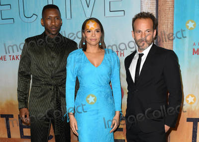 "Carmen Ejogo, Stephen Dorff, Mahershala Ali, Ali Farka Touré Photo - 10 January 2019 - Hollywood, California - Mahershala Ali, Carmen Ejogo, Stephen Dorff . ""True Detective"" third season premiere held at Directors Guild of America. Photo Credit: Birdie Thompson/AdMedia"