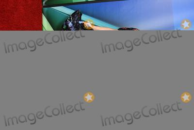 Anna Camp, Bradley Whitford, Anna Maria Perez de Taglé Photo - 08 August 2019 - Beverly Hills, California - Anna Camp, Bradley Whitford. 2019 NBC Summer Press Tour held at Beverly Hilton Hotel. Photo Credit: Birdie Thompson/AdMedia