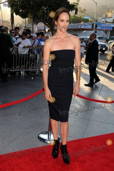 "Annabeth Gish Photo - 8 July 2013 - West Hollywood, California - Annabeth Gish. ""The Bridge"" Series Premiere held at the DGA Theatre. Photo Credit: Byron Purvis/AdMedia"