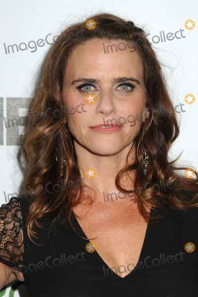 Amy Landecker Photo - 3 October 2015 - Century City, California - Amy Landecker. Point Foundation 2015 Voices On Point Gala held at the Hyatt Regency Century Plaza Hotel. Photo Credit: Byron Purvis/AdMedia