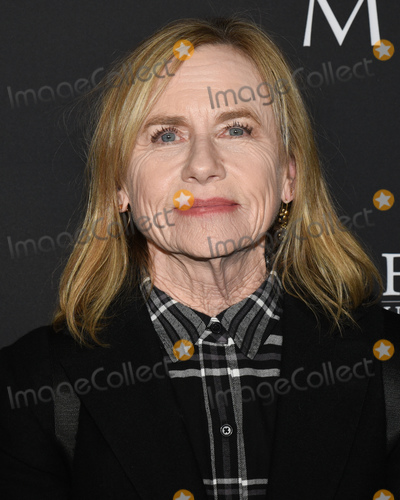 """Amy Madigan Photo - 16 January 2020 - Hollywood, California - Amy Madigan. Roadside Attractions' """"The Last Full Measure"""" Los Angeles Premiere held at The Arclight Hollywood. Photo Credit: Billy Bennight/AdMedia"""