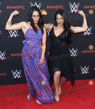 Brie Bella, Nikki Bella Photo - 06 June 2018 - North Hollywood, California - Brie Bella, Nikki Bella. WWE FYC Event held at Saban Media Center at the Television Academy. Photo Credit: Birdie Thompson/AdMedia