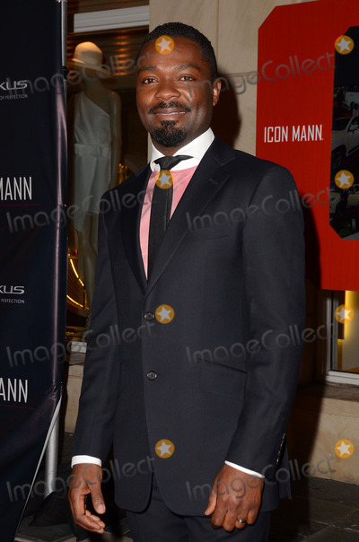 David Oyelowo Photo - 25 February 2014 - Beverly Hills, California - David Oyelowo. Arrivals for the ICON MANN's 2 annual Power 50 pre-Oscar dinner at The Peninsula Hotel in Beverly Hills, Ca. Photo Credit: Birdie Thompson/AdMedia
