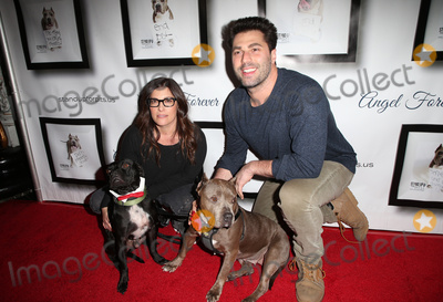 Adam Ray, Rebecca Corry, Josh Wolf, Joe Corré, Joseph Corré Photo - Josh Wolf05 November 2017 - Hollywood, California - Rebecca Corry, Adam Ray. 7th Annual Stand Up For Pits held at Avalon Hollywood. Photo Credit: F. Sadou/AdMedia