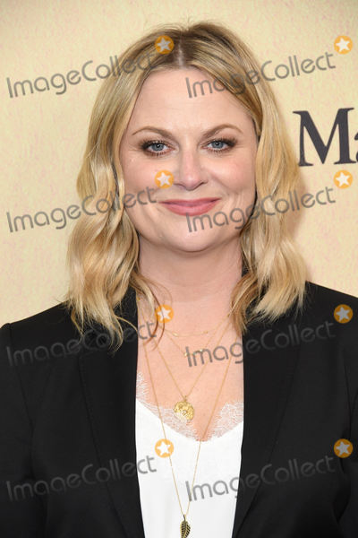 Amy Poehler Photo - 12 June 2019 - Beverly Hills, California - Amy Poehler. Women In Film Annual Gala 2019 Presented By Max Mara  held at Beverly Hilton Hotel. Photo Credit: Birdie Thompson/AdMedia