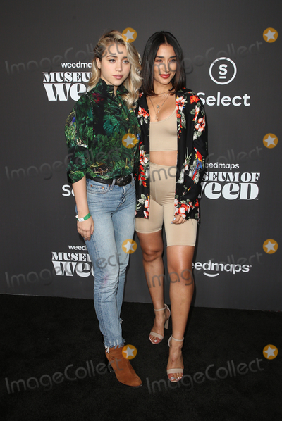 Caylee Cowan, Alicia Naomi Photo - 1 August 2019 - Los Angeles, California - Caylee Cowan, Alicia Naomi. Weedmaps Museum of Weed Exclusive Preview Celebration held at Weedmaps Museum Pop Up. Photo Credit: FSadou/AdMedia