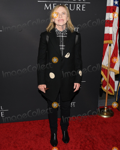 "Amy Madigan Photo - 16 January 2020 - Hollywood, California - Amy Madigan. Roadside Attractions' ""The Last Full Measure"" Los Angeles Premiere held at The Arclight Hollywood. Photo Credit: Billy Bennight/AdMedia"