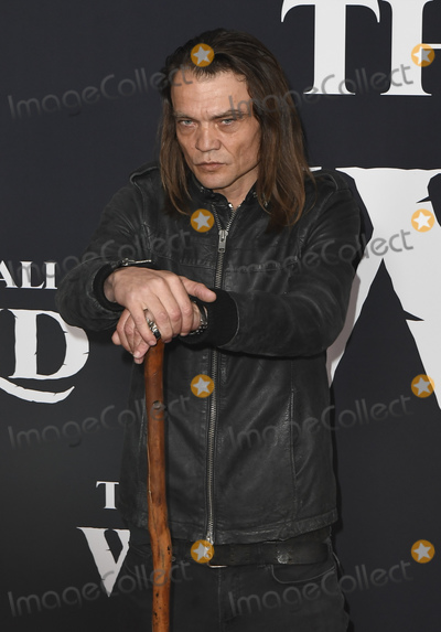 Micah Fitzgerald Photo - 13 February 2020 - Hollywood, California - Micah Fitzgerald . The Call of the Wild Twentieth Century Studios World Premiere held at El Capitan Theater. Photo Credit: Dave Safley/AdMedia