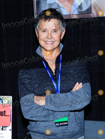 """Amanda Bearse, D'arcy Photo - 01 October 2016 - Hamilton, Ontario, Canada.  Actress Amanda Bearse (best known for her role as neighbor Marcy Rhoades D'Arcy on """"Married with Children"""") at Hamilton Comic Con at the Canadian Warplane Heritage Museum. Photo Credit: Brent Perniac/AdMedia"""