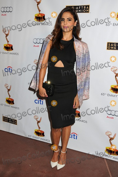 Azita Ghanizada Photo - 17 September 2013 - North Hollywood, California - Azita Ghanizada. Academy of Television Arts & Sciences' Dynamic and Diverse 2013 Emmy Nominee Reception. Photo Credit: Byron Purvis/AdMedia