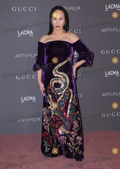 Ava Chow Photo - 04 November  2017 - Los Angeles, California - Ava Chow. 2017 LACMA Art+Film Gala held at LACMA in Los Angeles. Photo Credit: Birdie Thompson/AdMedia