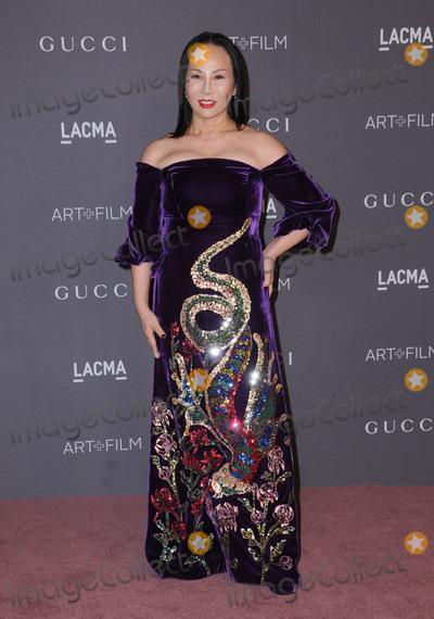 Ava Chow Photo - 04 November  2017 - Los Angeles, California - Ava Chow. 2017 LACMA Art+Film Gala held at LACMA in Los Angeles. Photo Credit: Birdie Thompson/AdMedia