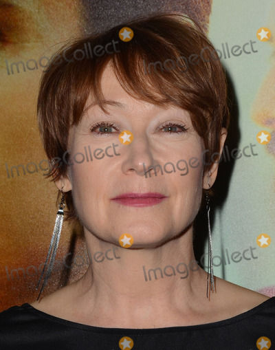 """Ann Magnuson Photo - 15 January 2014 - Hollywood, California - Ann Magnuson. Cast and celebrity arrivals for the Los Angeles premiere of HBO's new comedy series """"LOOKING"""" at The Paramount Theater in Paramount Studios in Hollywood, Ca. Photo Credit: Birdie Thompson/AdMedia"""