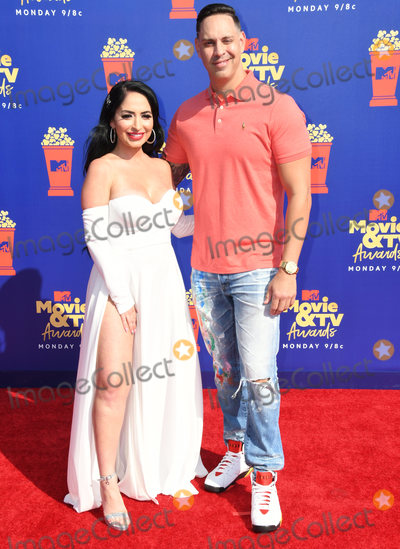 Angelina Pivarnick Photo - 15 June 2019 - Santa Monica, California - Angelina Pivarnick. 2019 MTC Movie and TV Awards held at Barker Hangar. Photo Credit: Birdie Thompson/AdMedia