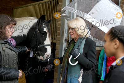 Duchess of Cornwall, Ebony Photo - 13 October 2020 -Camilla Duchess of Cornwall visits Ebony Horse Club as President of the Club in Brixton, South London. Photo Credit: ALPR/AdMedia