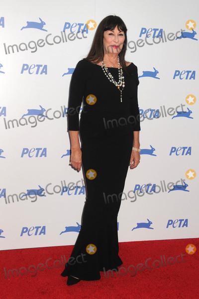 Anjelica Huston Photo - 30 September 2015 - Hollywood, California - Anjelica Huston. PETA 35th Anniversary Gala held at the Hollywood Palladium. Photo Credit: Byron Purvis/AdMedia