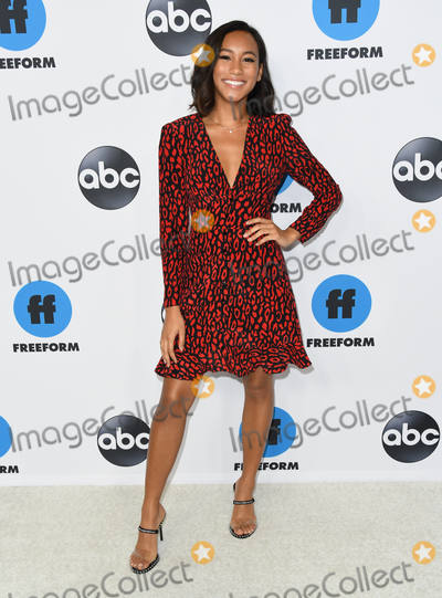 Sydney Park Photo - 05 February 2019 - Pasadena, California - Sydney Park. Disney ABC Television TCA Winter Press Tour 2019 held at The Langham Huntington Hotel. Photo Credit: Birdie Thompson/AdMedia