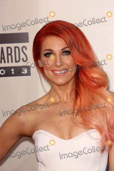 Photo - Bonnie McKee at The 2013 American Music Awards - Arrivals , Nokia Theater, Los Angeles, CA 11-24-13