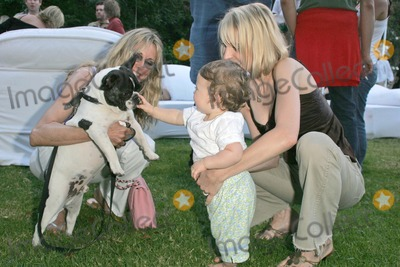 "Alana Hamilton, Elizabeth Harrison, Lara Shriftman Photo - Alana Hamilton at the party honoring Lara Shriftman and Elizabeth Harrison and the launch of their new book ""Fete Accompli! The Ultimate Guide To Creative Entertaining"", at a private residence, Malibu, CA. 08-28-04"