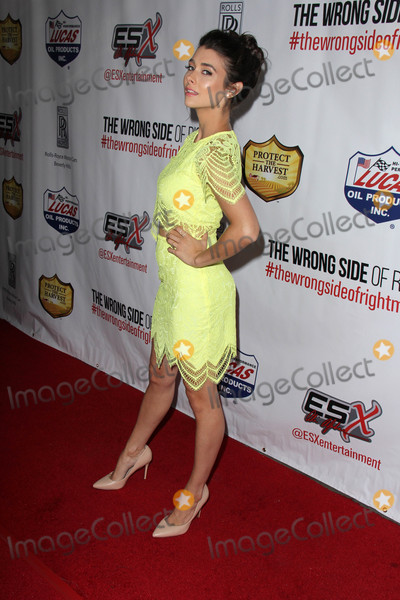 """Allison Paige Photo - Allison Paige at """"The Wrong Side of Right"""" Premiere, TCL Chinese 6, Hollywood, CA 07-14-15"""