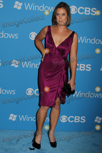 Ashley Williams Photo - Ashley Williams