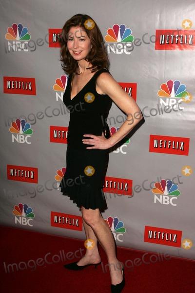 Dana Delany, RITZ CARLTON Photo - Dana DelanyAt the NBC TCA Press Tour. Ritz Carlton Huntington Hotel, Pasadena, CA. 07-22-06