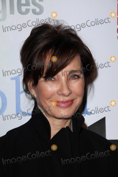 Anne Archer Photo - Anne Archer at the Global Action Awards Gala, Beverly Hilton Hotel, Beverly Hills, CA. 02-18-11