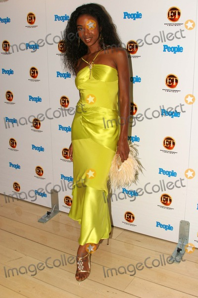 Ananda Lewis, Mondrian Hotel Photo - Ananda Lewis at the Entertainment Tonight Emmy Party, Mondrian Hotel, West Hollywood, CA 09-19-04