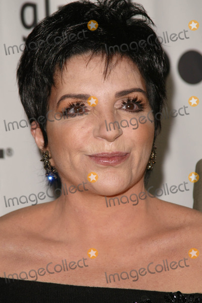 Photos and Pictures - Liza Minelli at the 16th Annual GLAAD