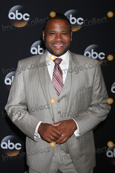 Anthony Anderson Photo - LOS ANGELES - JUL 15:  Anthony Anderson at the ABC July 2014 TCA at Beverly Hilton on July 15, 2014 in Beverly Hills, CA