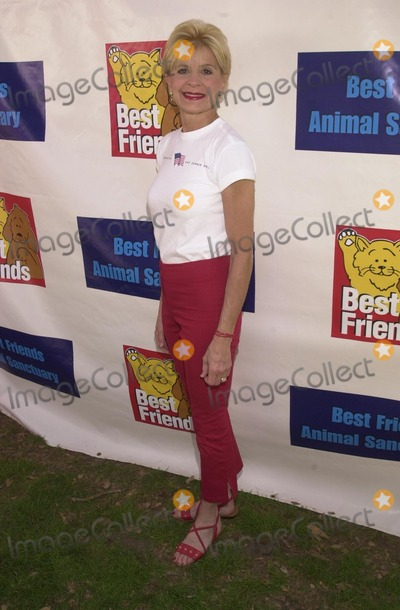 Concetta Tomei, Johnny Carson Photo - Concetta Tomei at the Best Friends Animal Sanctuary Pet Adoption Festival, at Johnny Carson Park, Burbank, CA 09-14-02