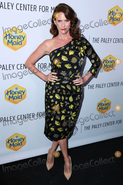 Amy Landecker Photo - Amy Landecker  at The Paley Center For Media 2014 Los Angeles Gala, Skirball Center, Los Angeles, CA 11-12-14