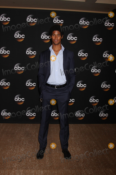 Alfred Enoch Photo - LOS ANGELES - JUL 15:  Alfred Enoch at the ABC July 2014 TCA at Beverly Hilton on July 15, 2014 in Beverly Hills, CA