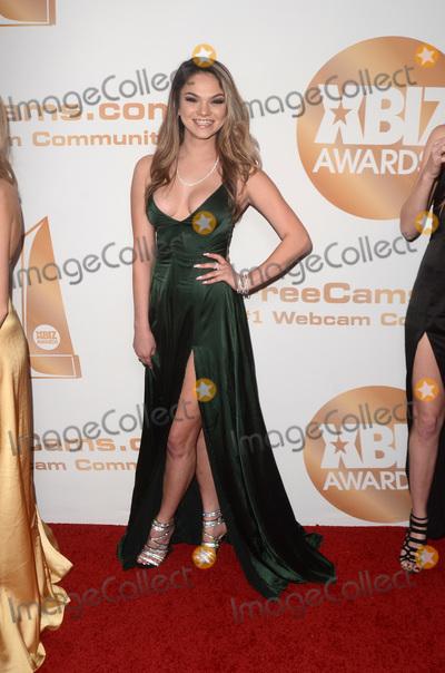 Athena Faris Photo - LOS ANGELES - JAN 17:  Athena Faris at the 2019 XBIZ Awards at the Westin Bonaventure Hotel on January 17, 2019 in Los Angeles, CA
