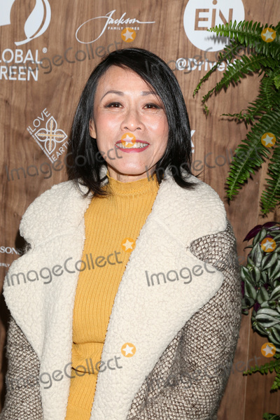 Four Seasons, The Four Seasons Photo - LOS ANGELES - FEB 20:  Tan Kheng Hua at the Global Green 2019 Pre-Oscar Gala at the Four Seasons Hotel on February 20, 2019 in Beverly Hills, CA