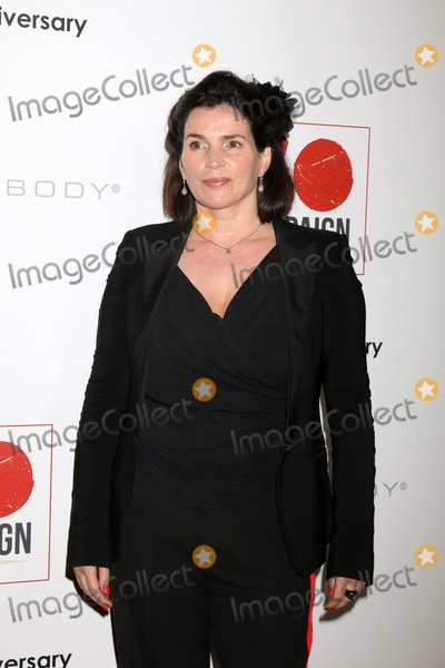 Julia Ormond Photo - LOS ANGELES - NOV 5:  Julia Ormond at the 10th Annual GO Campaign Gala at the Manuela at Hauser Wirth & Schimmel on November 5, 2016 in Los Angeles, CA